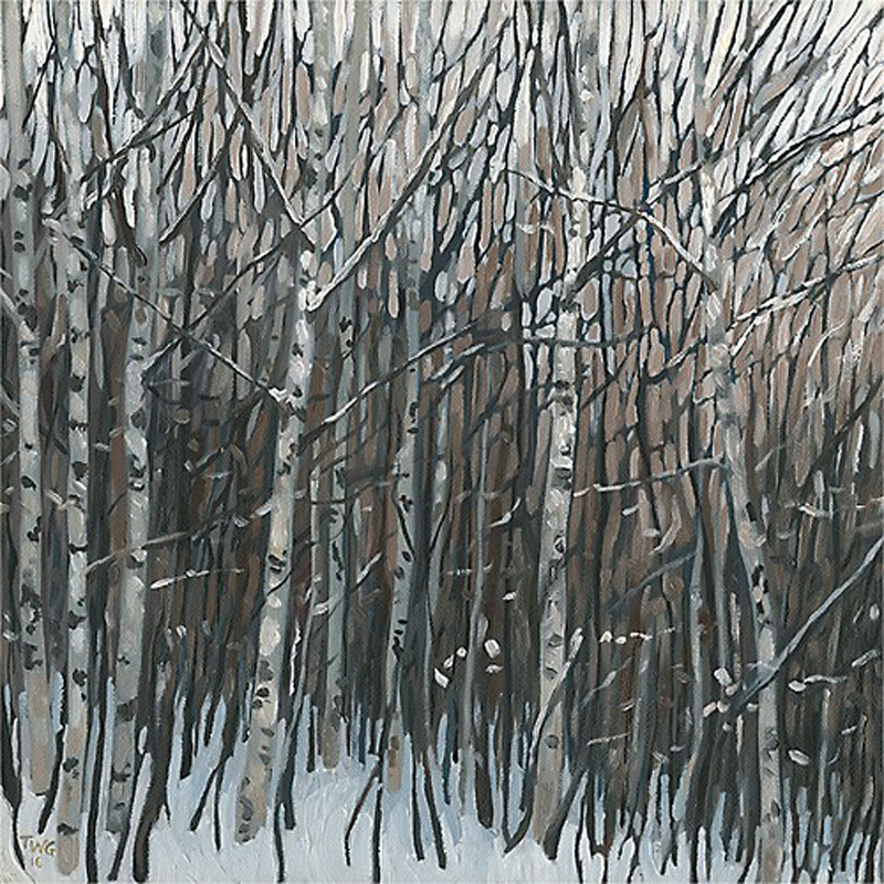 Winter Thicket