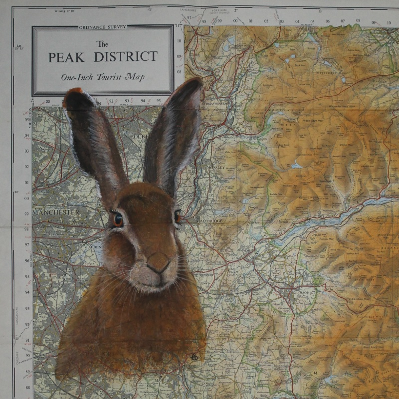 Peak District Hare Map