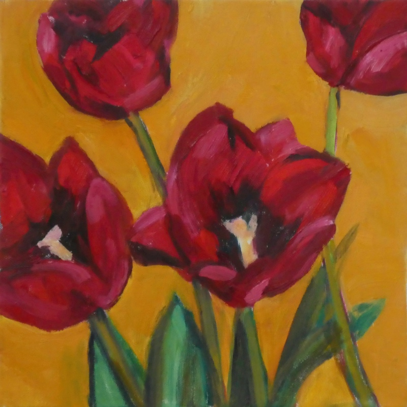 Cornish Red Tulips