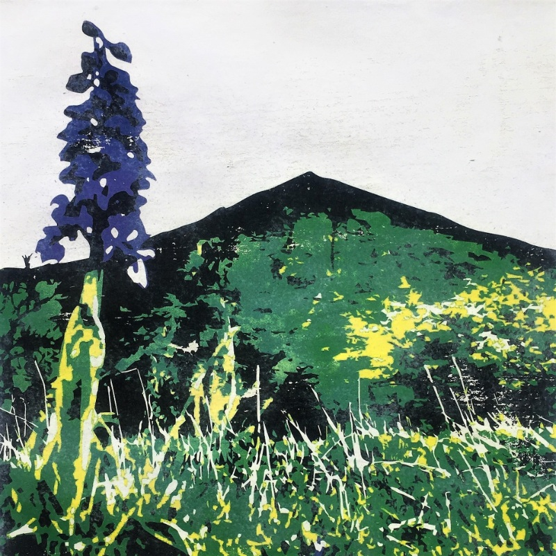 Thorpe Cloud with Orchid