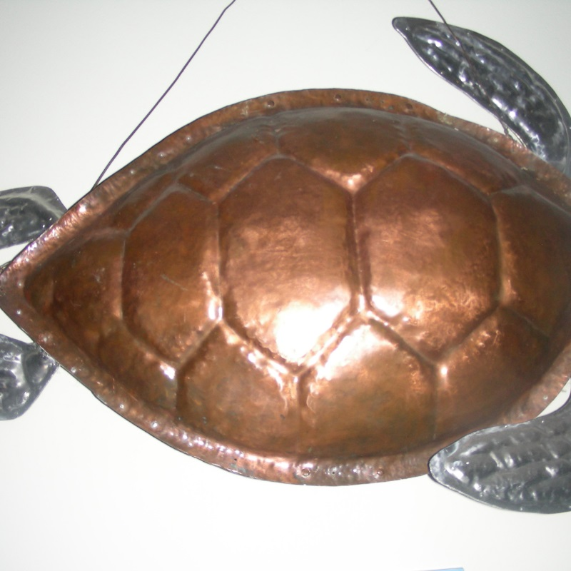 Copper Turtle