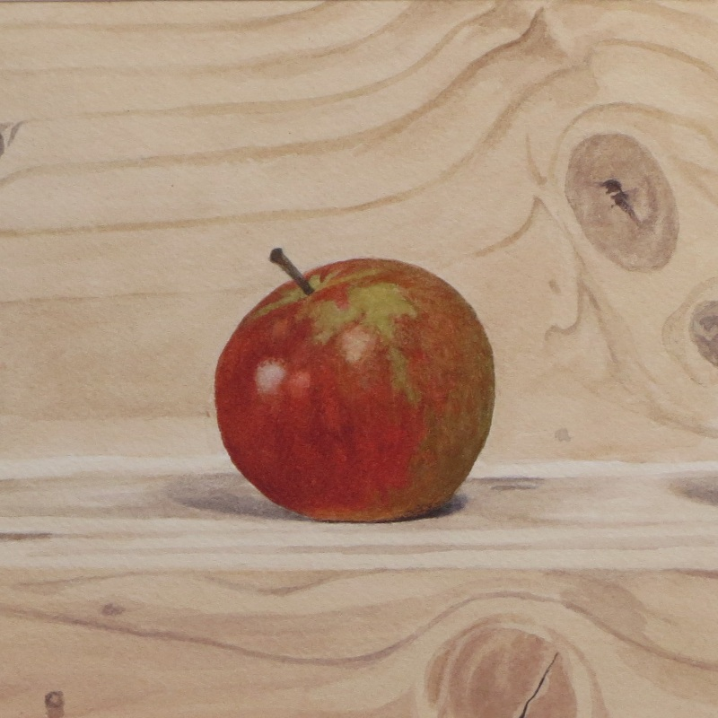 Apples on a shelf